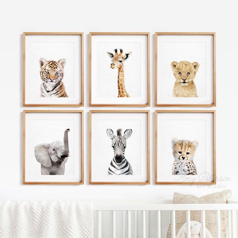 safari animal prints for baby shower decor