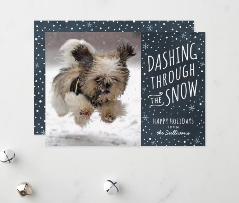 Cute dog dashing through the snow