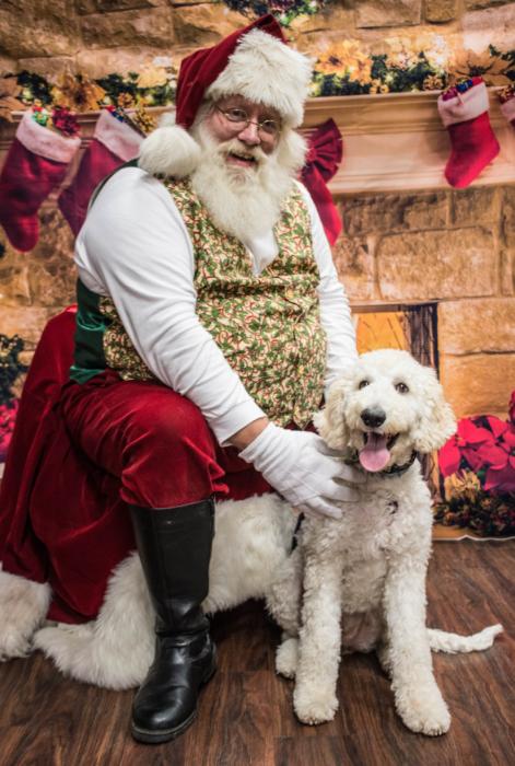 Christmas dog photo with Santa
