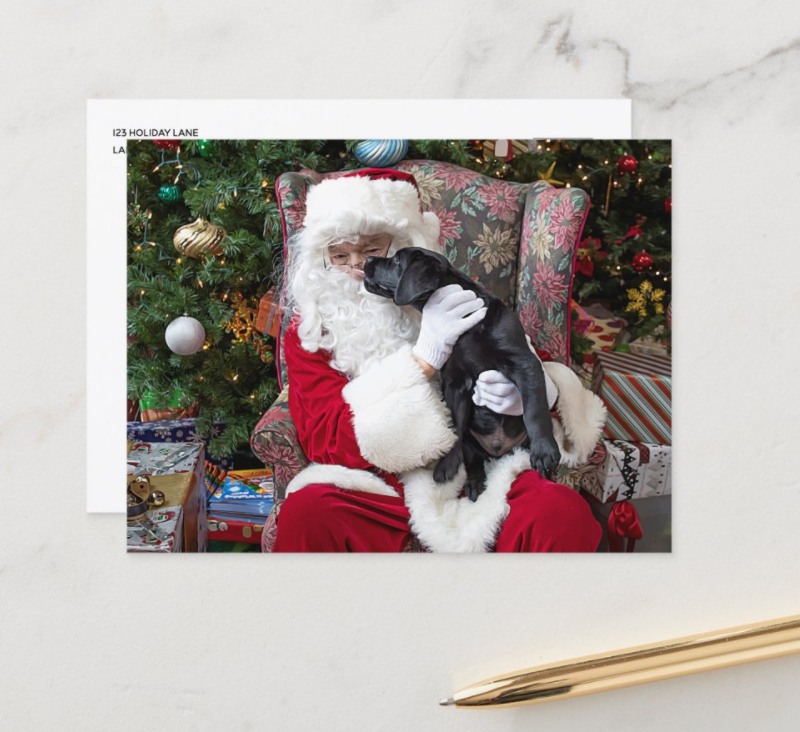 Cute Christmas dog photo on Santa's lap.