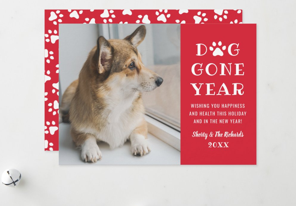 dog gone year - goodbye 2020