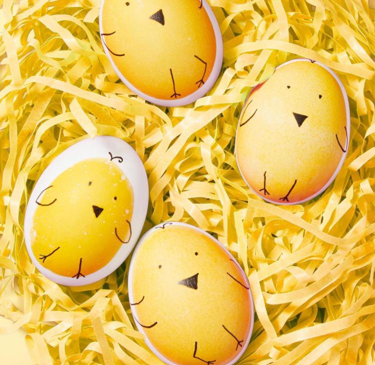 Cute Easter Egg Chicks