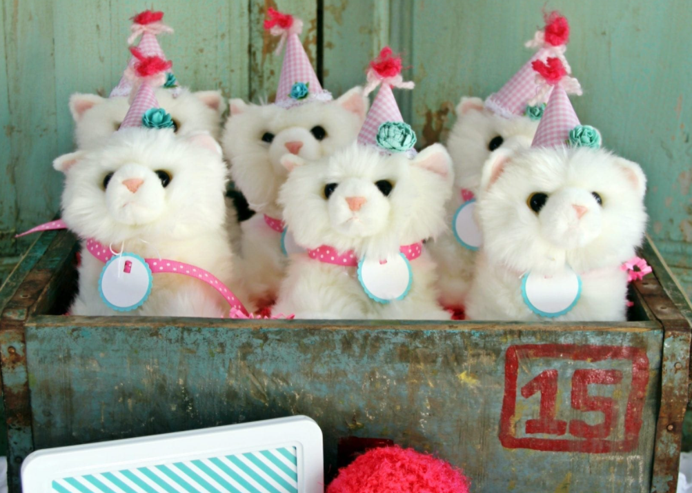 kitty cat party favors